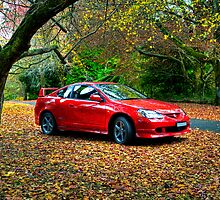 Honda Integra Type R | Mount Wilson | Blue Mountains | NSW by DavidIori