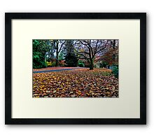 Autumn Mt Mount Wilson | NSW | The Blue Mountains | Australia Framed Print