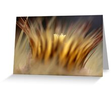 crown of thorns... Greeting Card