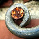 Rusty nail on wrought iron by Phil Campus