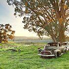End of the Road, Bendigo, Australia by Michael Boniwell