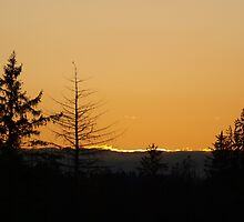 Pacfic Northwest Sunset by Kat Miller