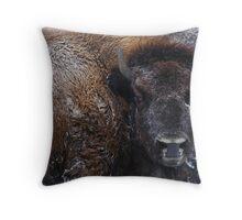 Bison IV Throw Pillow