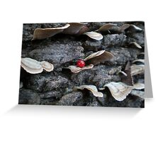 Red Spot Greeting Card