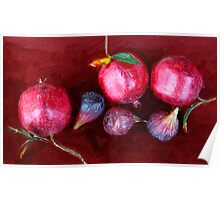 Figs and Pomegranates_St. Helena, CA Poster