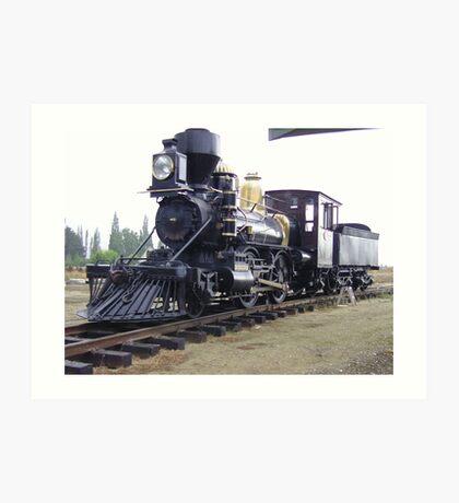 New Zealand Steam narrow gauge. Art Print