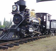 New Zealand Steam narrow gauge. by David Smith
