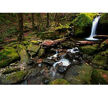 Mother Cummings Cascades Photographic Print