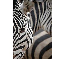 Savannah Stripes Photographic Print