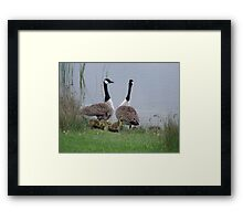 Family outing Framed Print