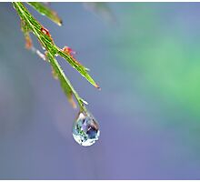 Zen Droplet Photographic Print