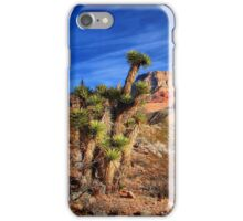 Arizona Wilderness iPhone Case/Skin