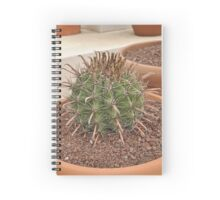 Ouch 5 Cactus Spiral Notebook