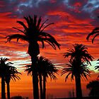 Sunset along St. Kilda beach by Donna O'Connor