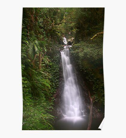 Gwongurai Falls, Toolona Creek Circuit Poster