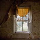 Today is a window, tomorrow is the landscape by DariaGrippo