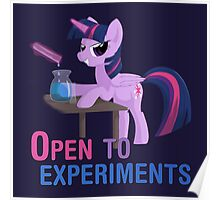 Open to experiments Poster