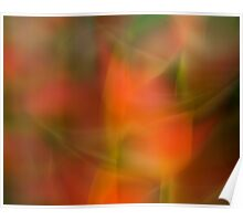 Heliconia abstraction Poster