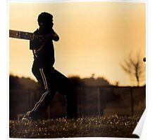 cricket bat training for championship Poster
