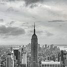 New York  by Lauren Banks