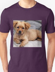 cute dog with priceless look on face Unisex T-Shirt