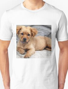 cute dog with priceless look on face T-Shirt