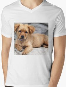 cute dog with priceless look on face Mens V-Neck T-Shirt