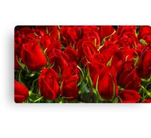 Red Red Roses a Plenty Canvas Print
