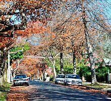 Autumn Street by Phillip Bruggink