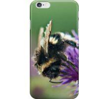 Scruffy Old Bumble Bee macro iPhone Case/Skin