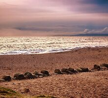 Dusk by the Sea by Vicki Field