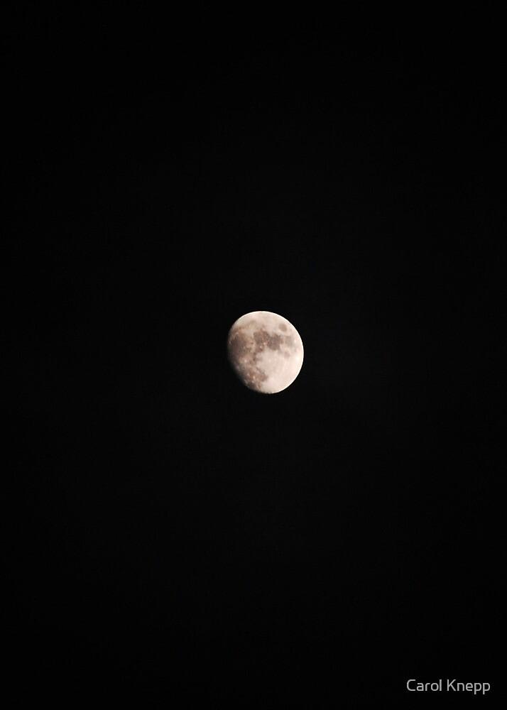 man on the moon by Carol Knepp