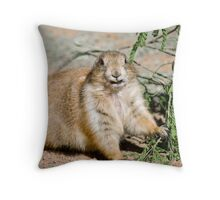Cheese! Throw Pillow