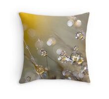 Brimmed with Mirth Throw Pillow