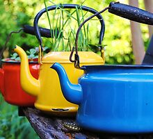 Three colorful pots in a row by lofquist