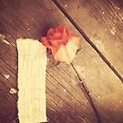 he told me why and left a rose by Angel Warda