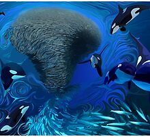Orca, killer whale playing with bait ball of fish  by Rose Robin