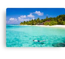 Snorkelling in the Maldivian Atolls - Indian Ocean Canvas Print