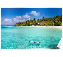 Snorkelling in the Maldivian Atolls - Indian Ocean Poster