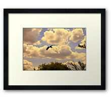 Going To The Wire Framed Print