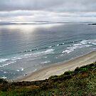 Seascape at Zapallar. Chile. by Daidalos