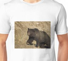 Grizzly Bear    36758 Unisex T-Shirt