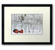 Winter Whiteness Framed Print