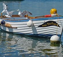 Three Gulls In A Boat by lynn carter