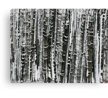 In a Finnish Forest 3 Canvas Print