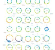 Infographic Weather Radials 2014 by Timm Kekeritz