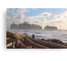 Rialto Beach, Washington State Coast Canvas Print