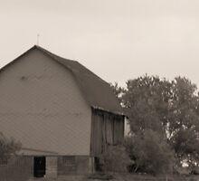 Old Barn by kari