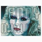 Candy Darling by adrienne75