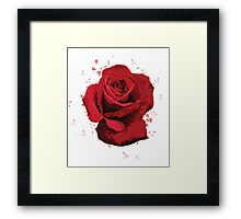 Rose Vector (illustrator) Framed Print